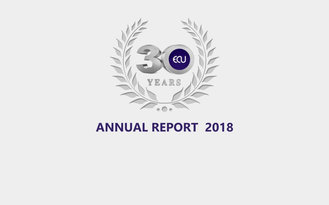 AGM Annual Report 2018